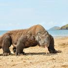 Đảo ở Indonesia sẽ đóng cửa vì nhiều du khách tới trộm rồng