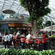 Vì sao nên đến sân bay Changi sớm 5 tiếng